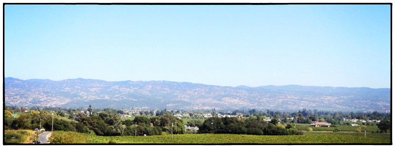 Remote Office in Napa Valley